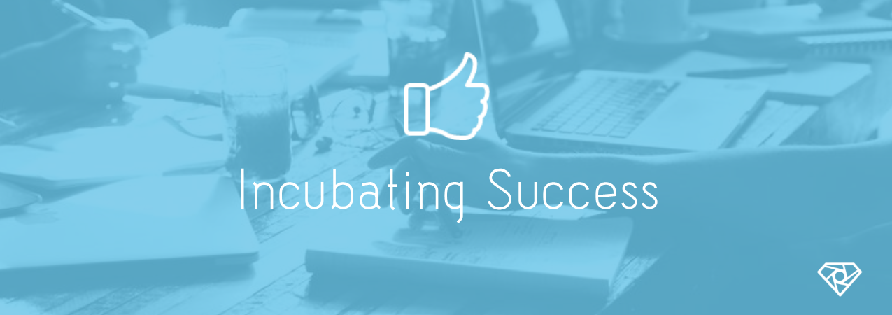 Incubating Success - Incubating Success - start-up